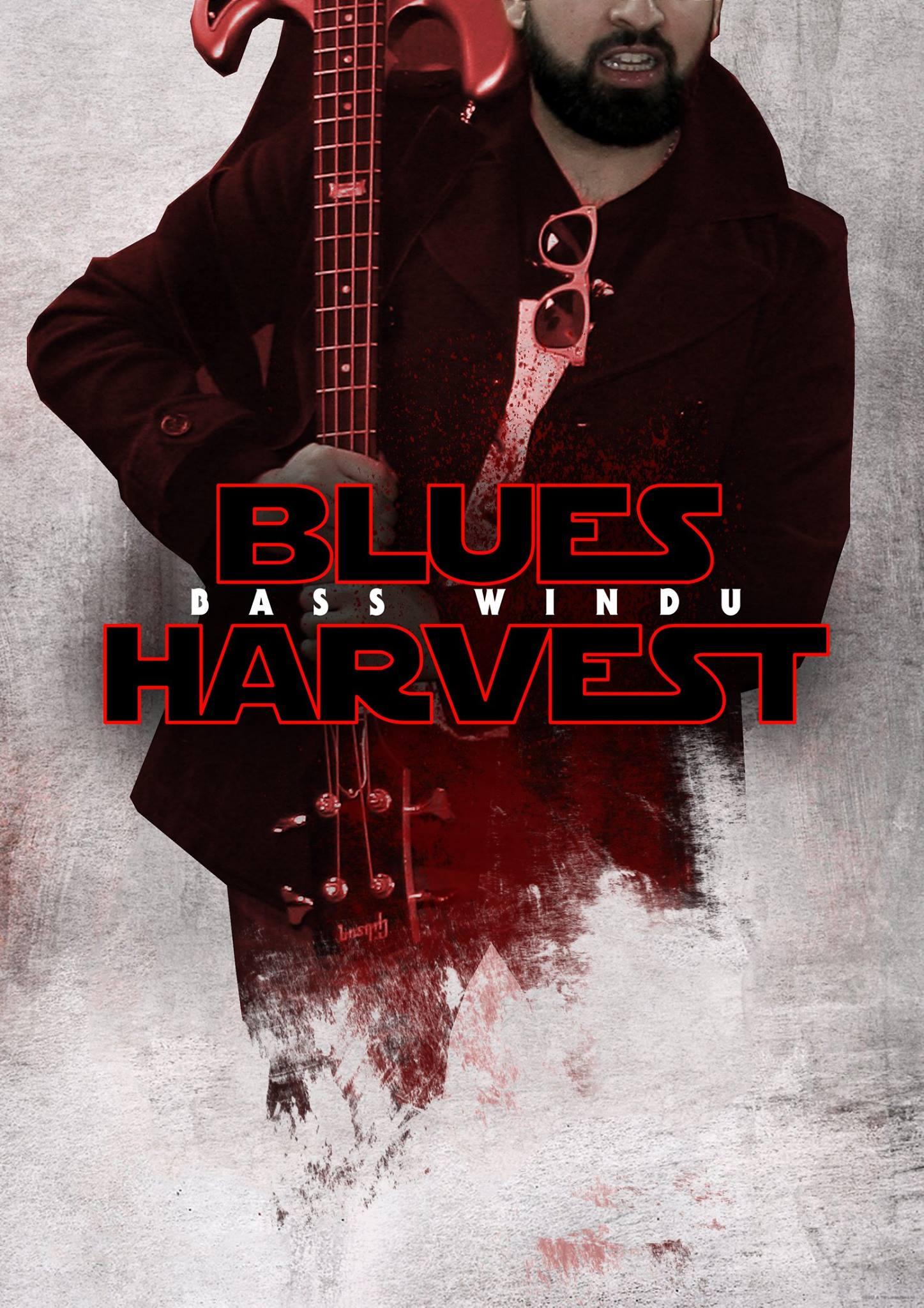 bass-windu-blues-harvest-the-last-jedi-character-posters